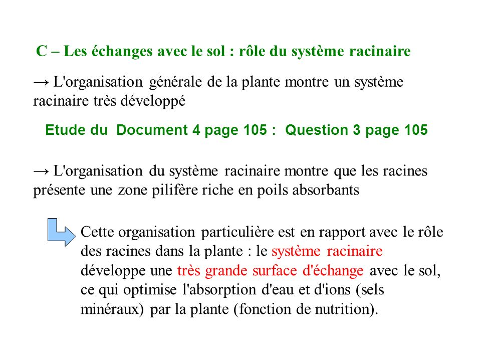 Etude du Document 4 page 105 : Question 3 page 105