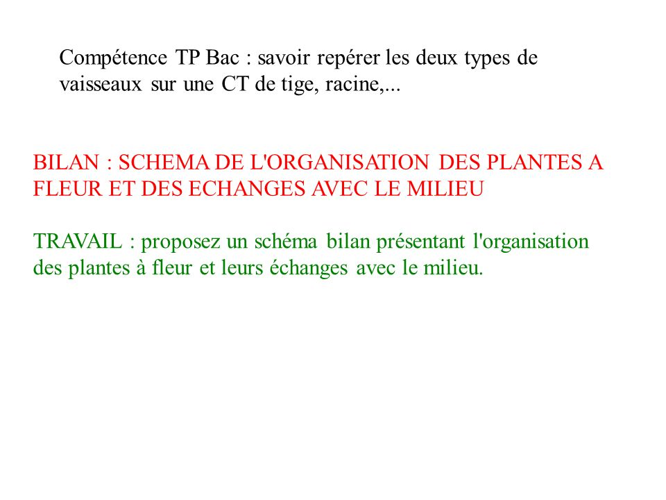 Compétence TP Bac : savoir repérer les deux types de vaisseaux sur une CT de tige, racine,...