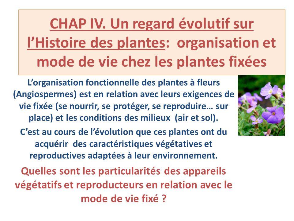 CHAP IV. Un regard évolutif sur l'Histoire des plantes: organisation et mode de vie chez les plantes fixées