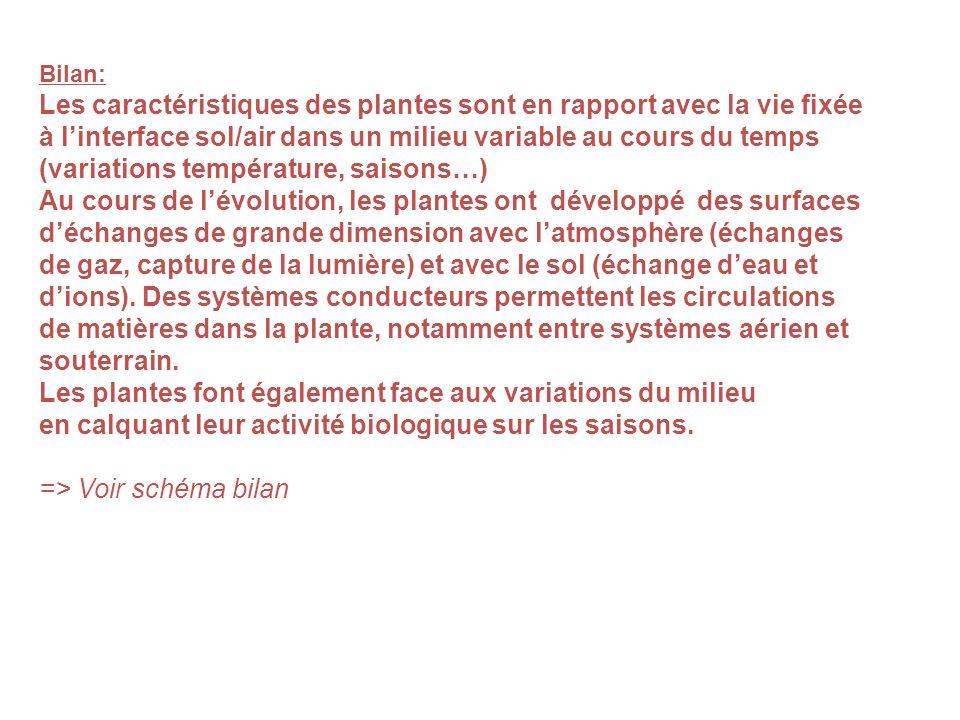 Les plantes font également face aux variations du milieu