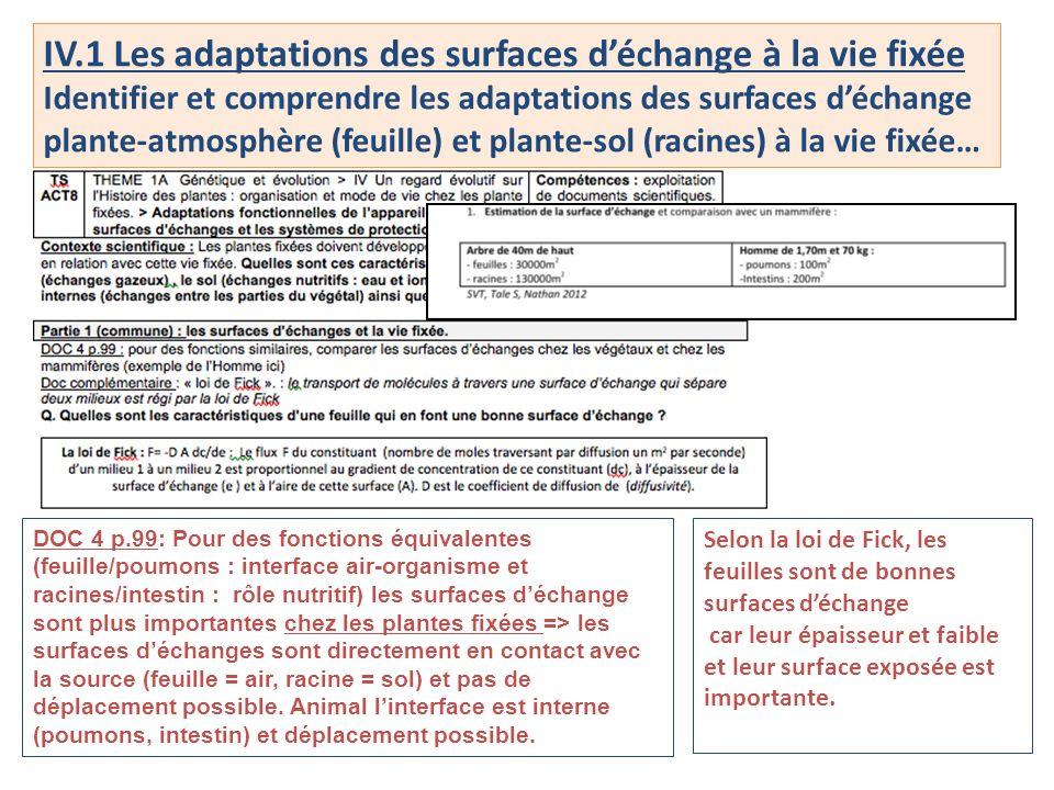 IV.1 Les adaptations des surfaces d'échange à la vie fixée