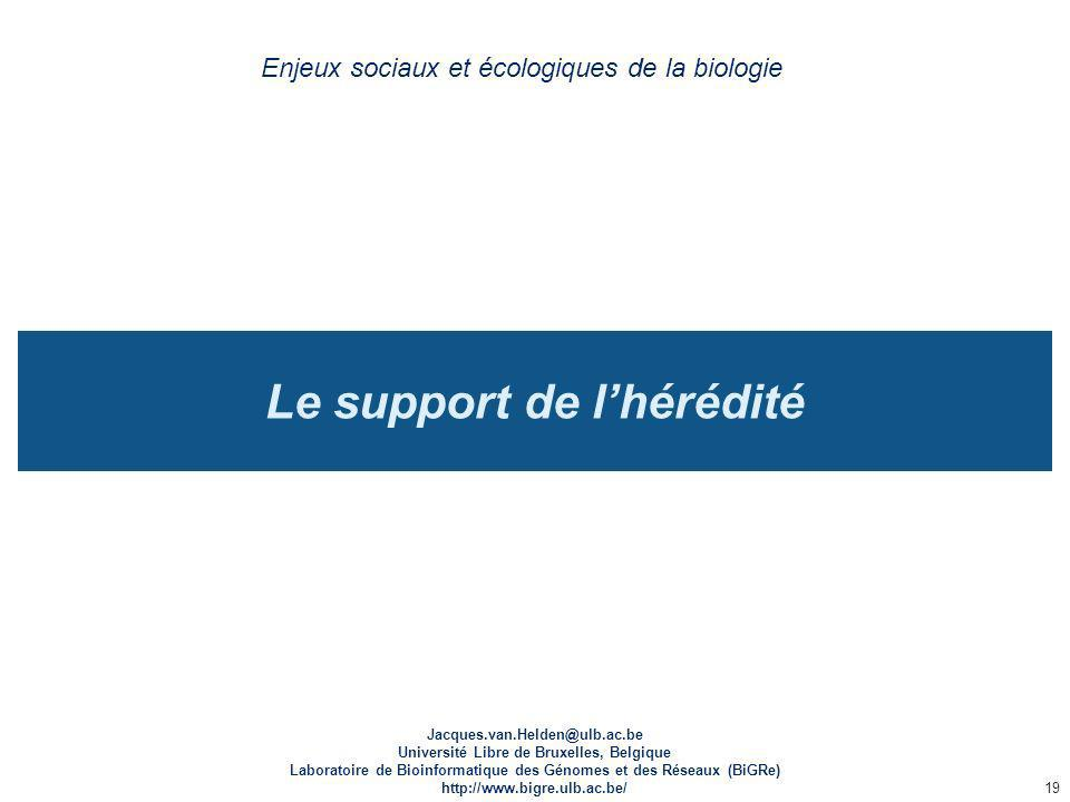 Le support de l'hérédité