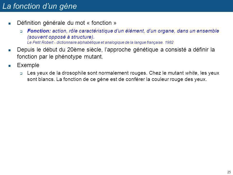 La fonction d'un gène Définition générale du mot « fonction »