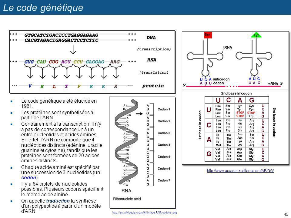 Le code génétique Le code génétique a été élucidé en 1961.