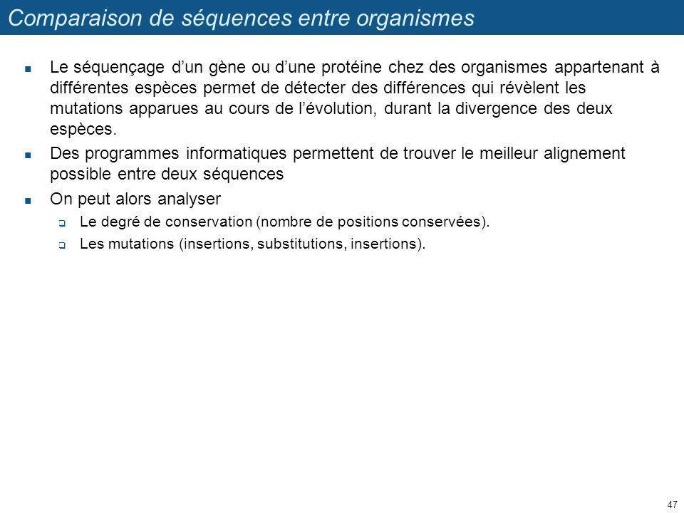 Comparaison de séquences entre organismes