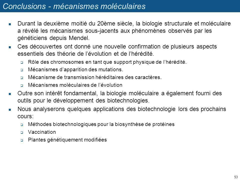 Conclusions - mécanismes moléculaires
