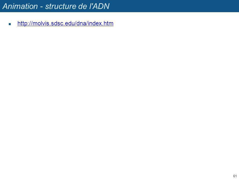 Animation - structure de l ADN
