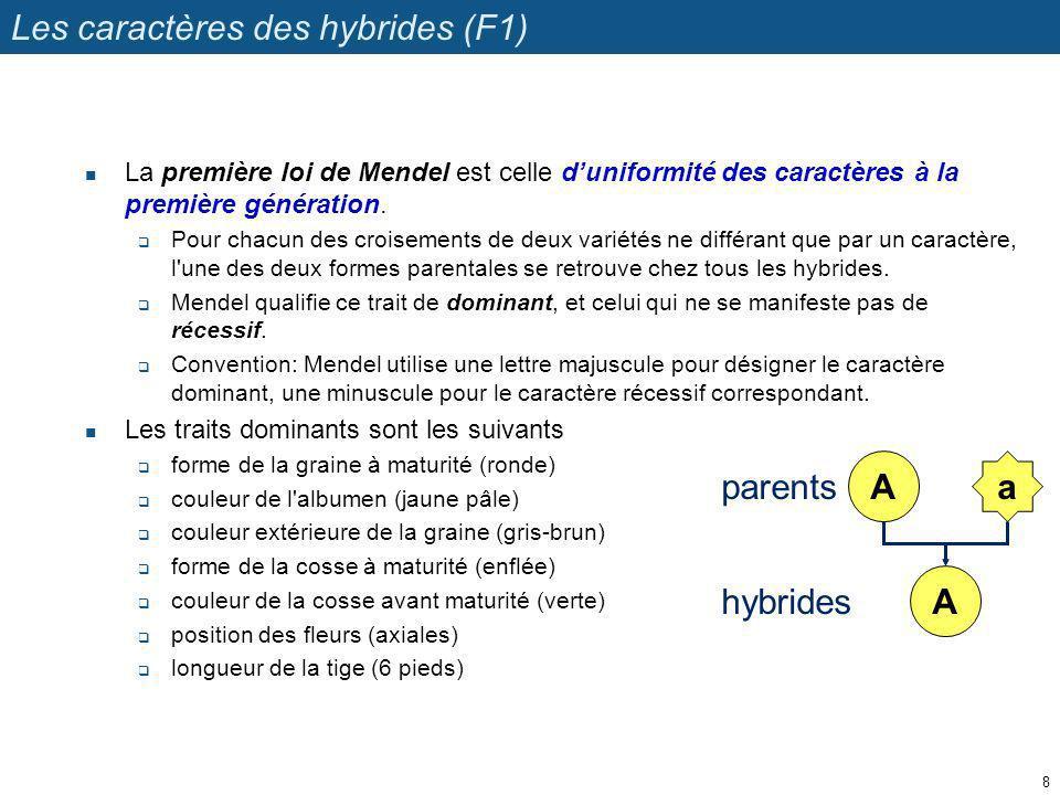 Les caractères des hybrides (F1)