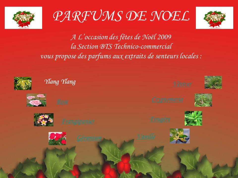 PARFUMS DE NOEL A L'occasion des fêtes de Noël 2009