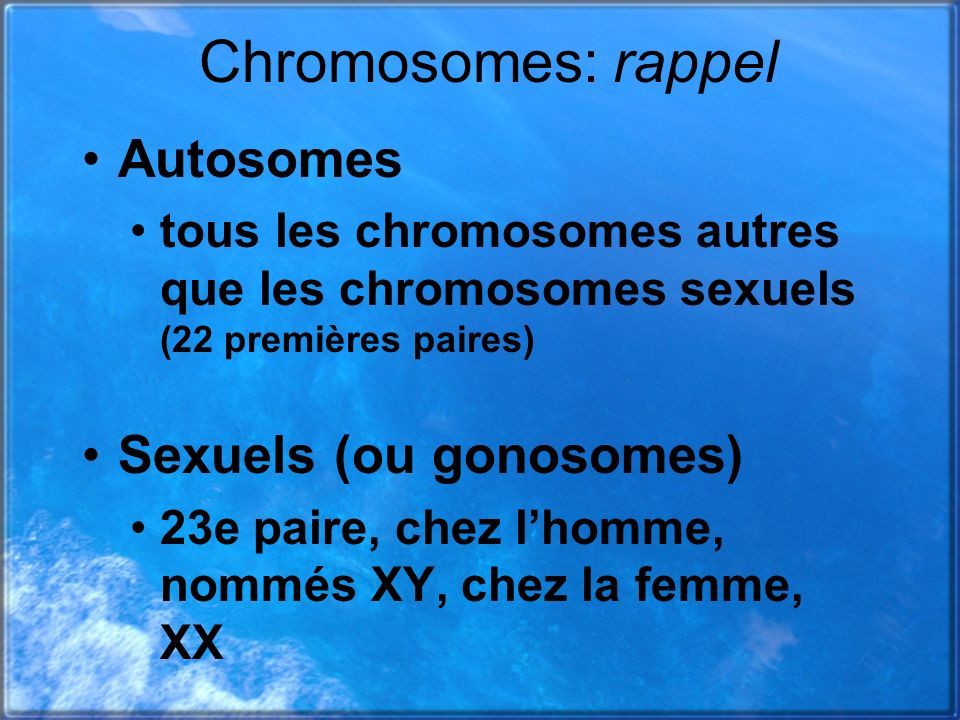 Chromosomes: rappel Autosomes Sexuels (ou gonosomes)