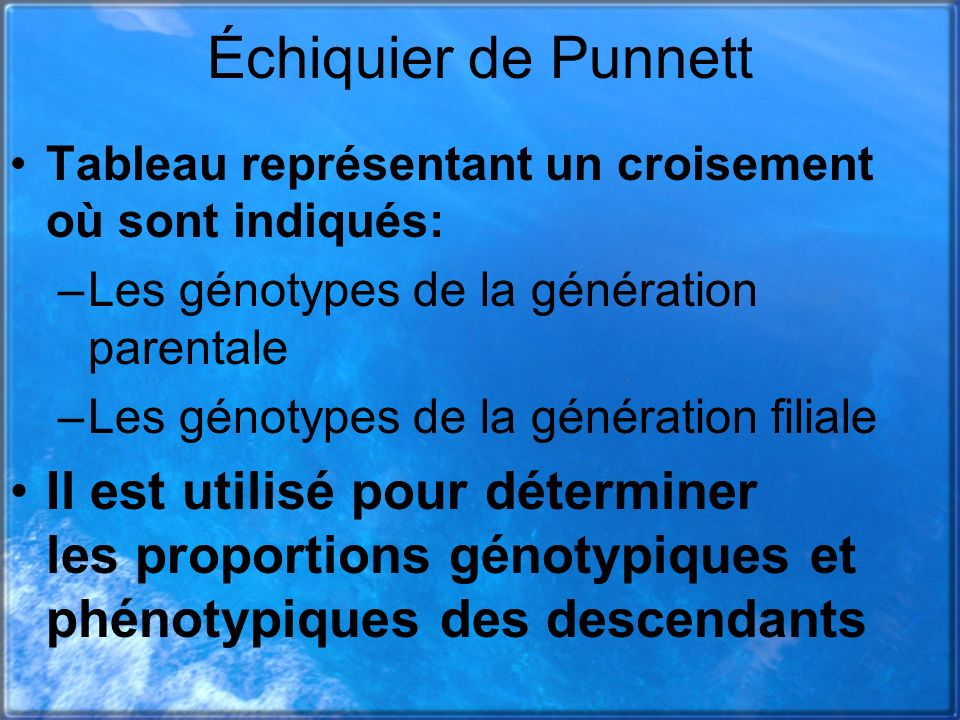 Échiquier de Punnett Tableau représentant un croisement où sont indiqués: Les génotypes de la génération parentale.