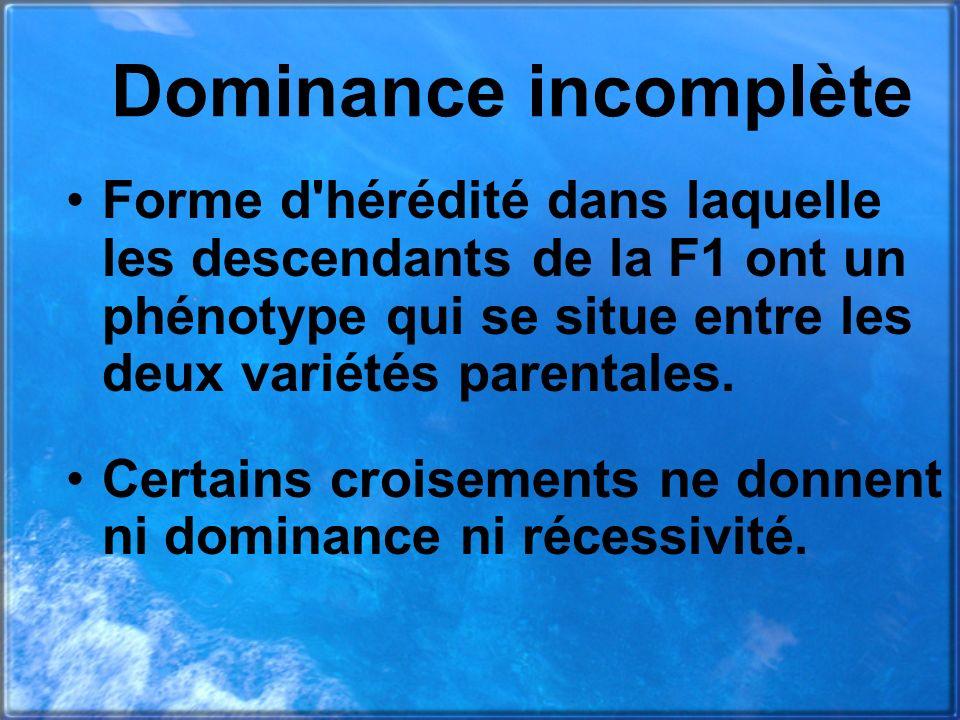 Dominance incomplète Forme d hérédité dans laquelle les descendants de la F1 ont un phénotype qui se situe entre les deux variétés parentales.