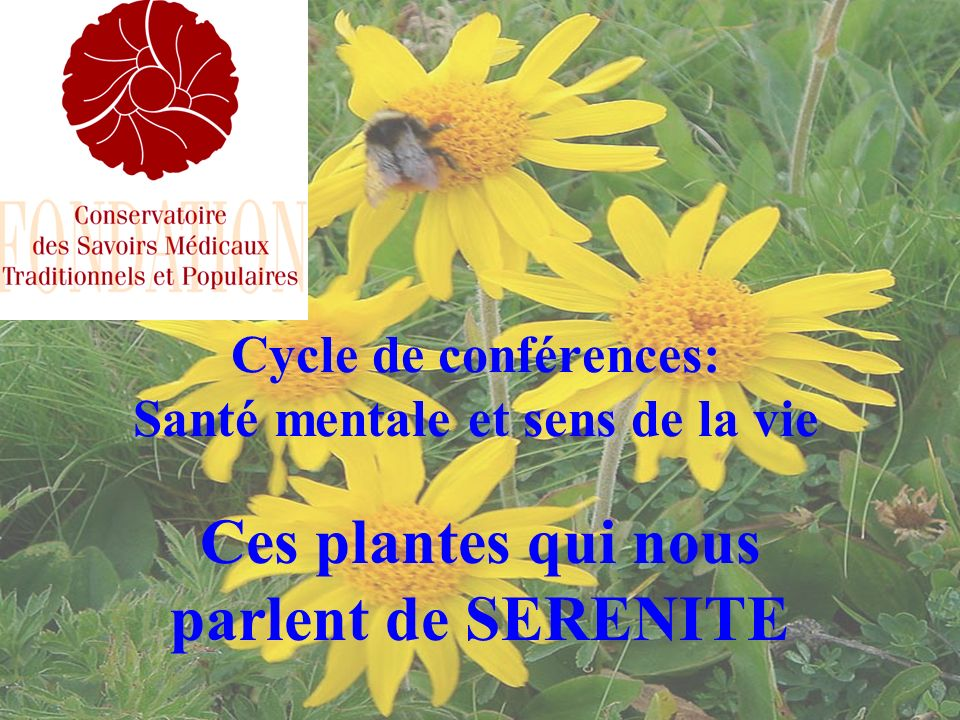 Cycle de conférences: Santé mentale et sens de la vie