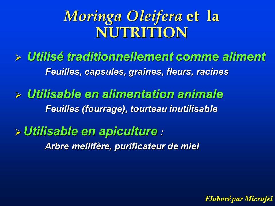 Moringa Oleifera et la NUTRITION