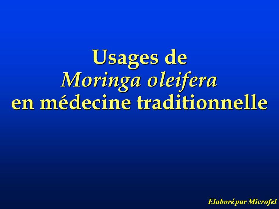 Usages de Moringa oleifera en médecine traditionnelle