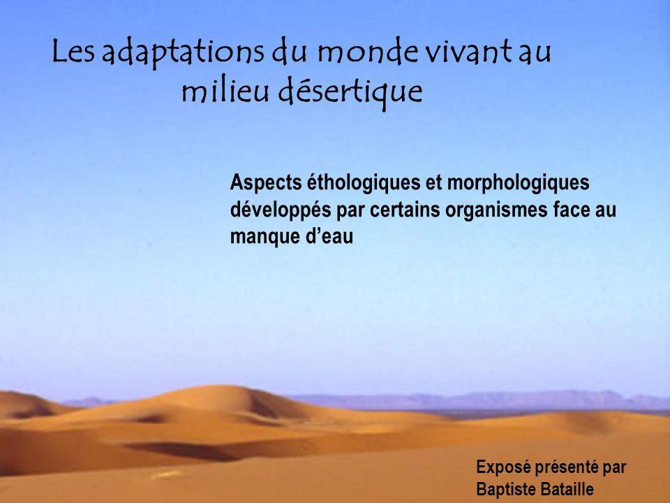Les adaptations du monde vivant au milieu désertique