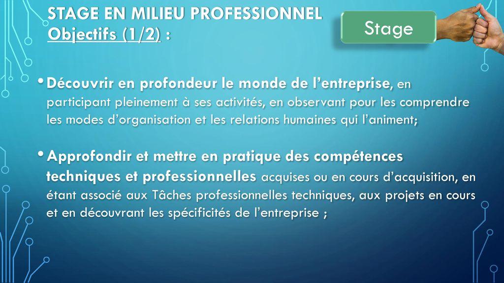 Stage en milieu Professionnel Objectifs (1/2) :