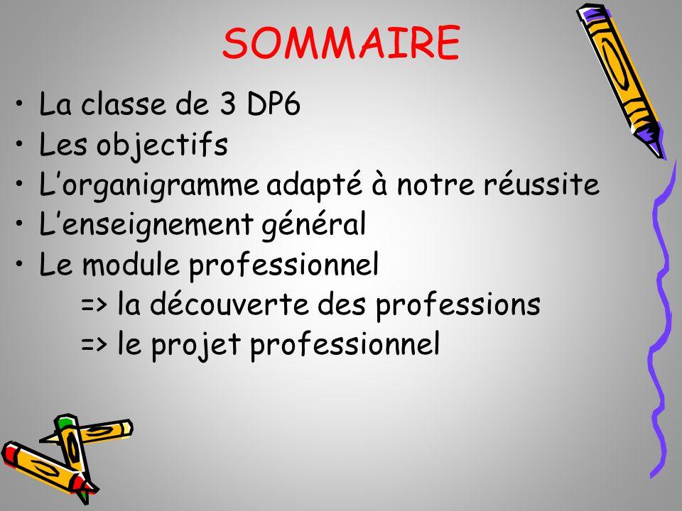 SOMMAIRE La classe de 3 DP6 Les objectifs