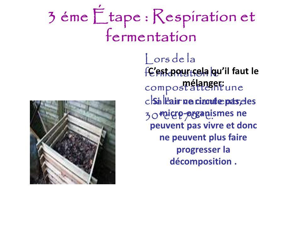 3 éme Étape : Respiration et fermentation