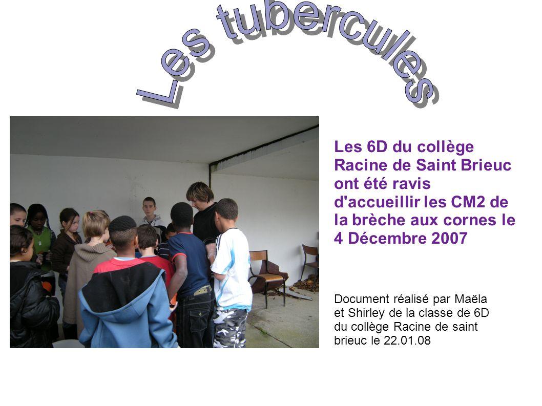 Les tubercules Les 6D du collège Racine de Saint Brieuc ont été ravis d accueillir les CM2 de la brèche aux cornes le 4 Décembre 2007.