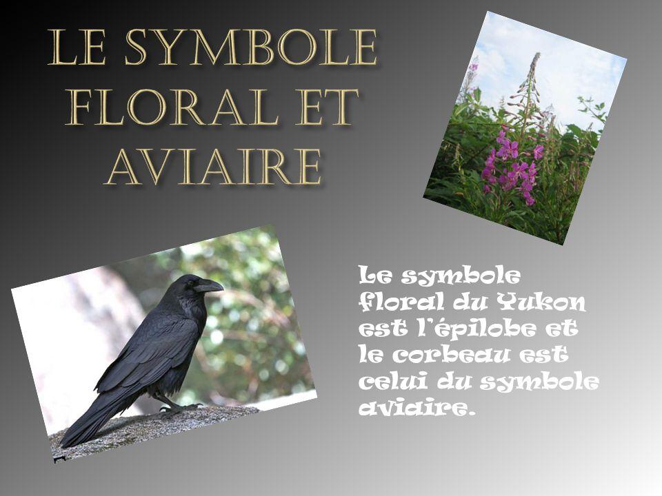 le symbole floral et aviaire