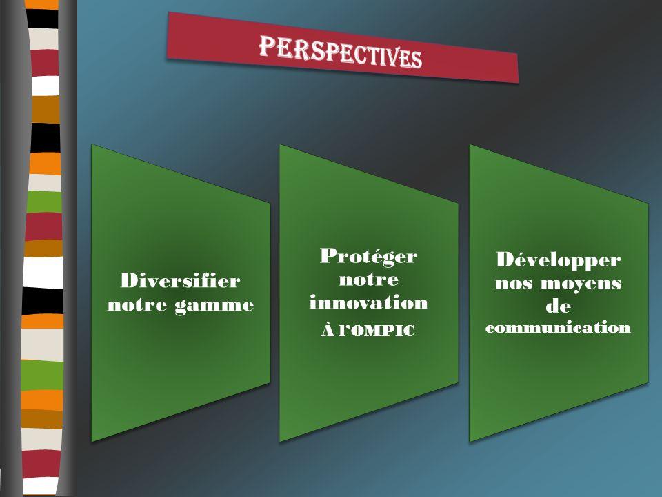 perspectives Développer nos moyens de communication
