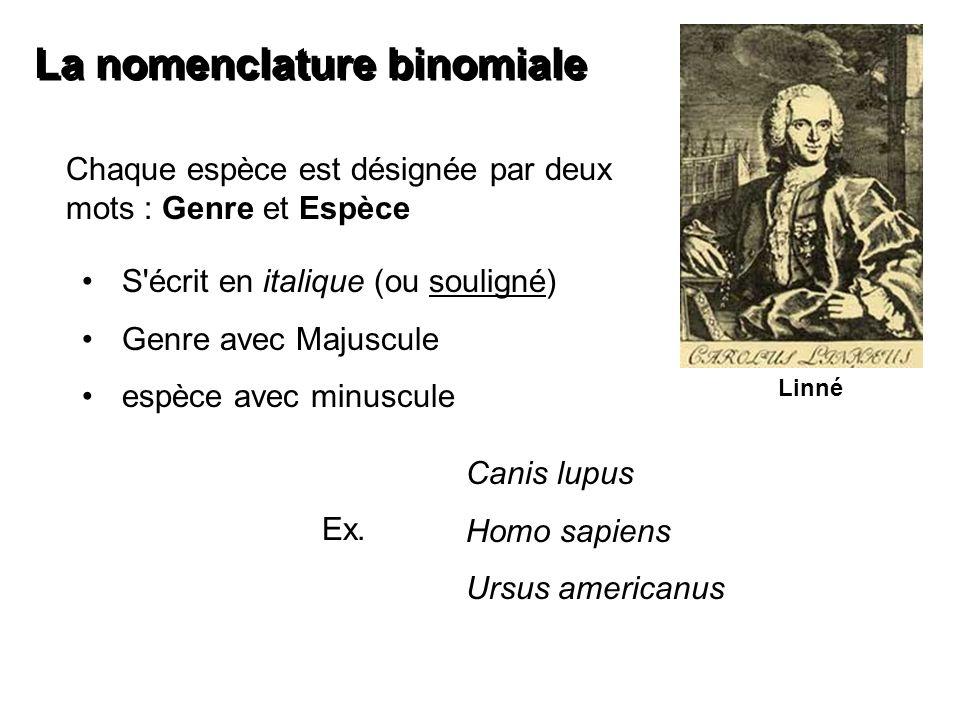 La nomenclature binomiale
