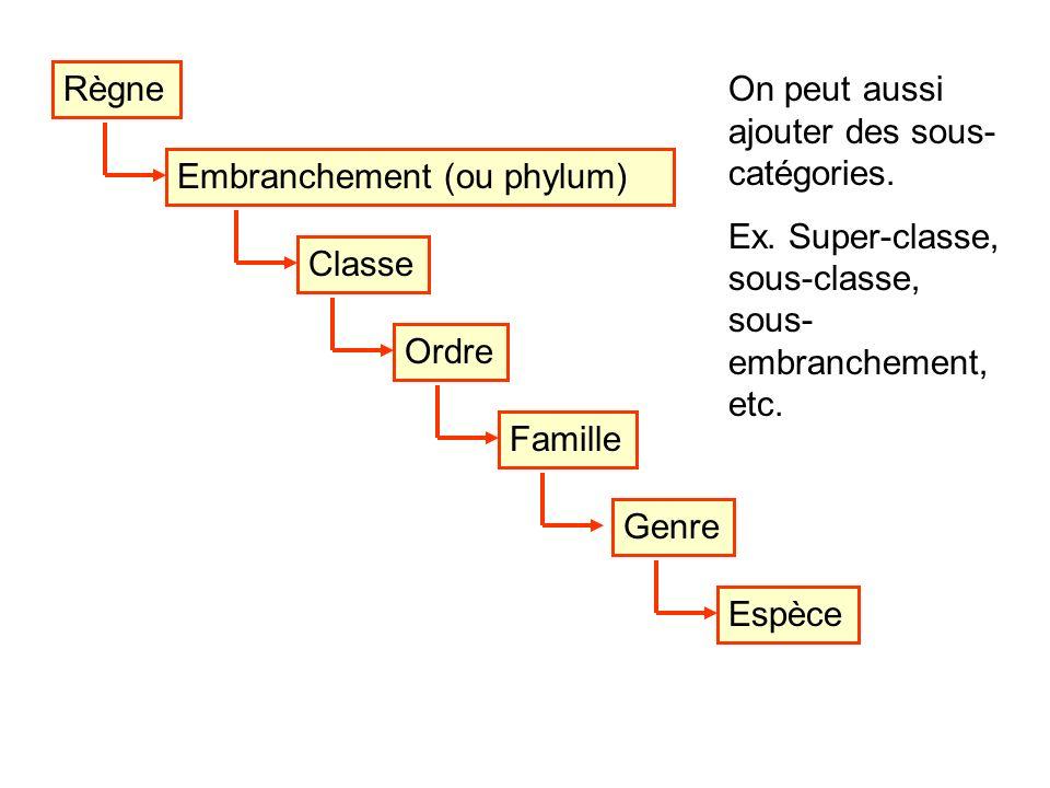 Règne On peut aussi ajouter des sous-catégories. Ex. Super-classe, sous-classe, sous-embranchement, etc.