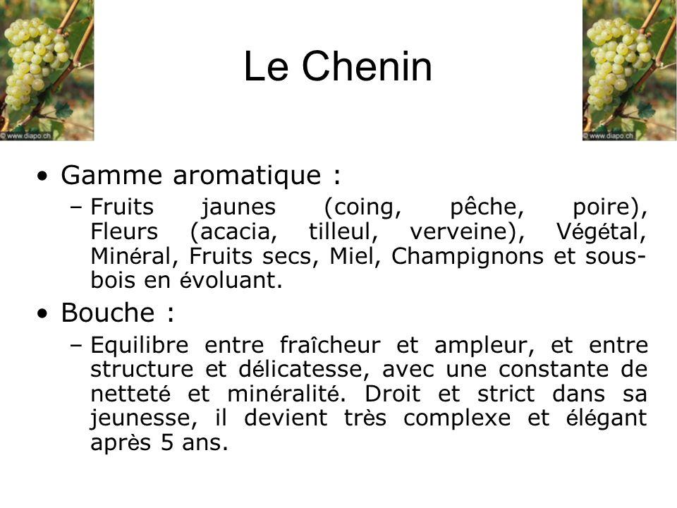 Le Chenin Gamme aromatique : Bouche :