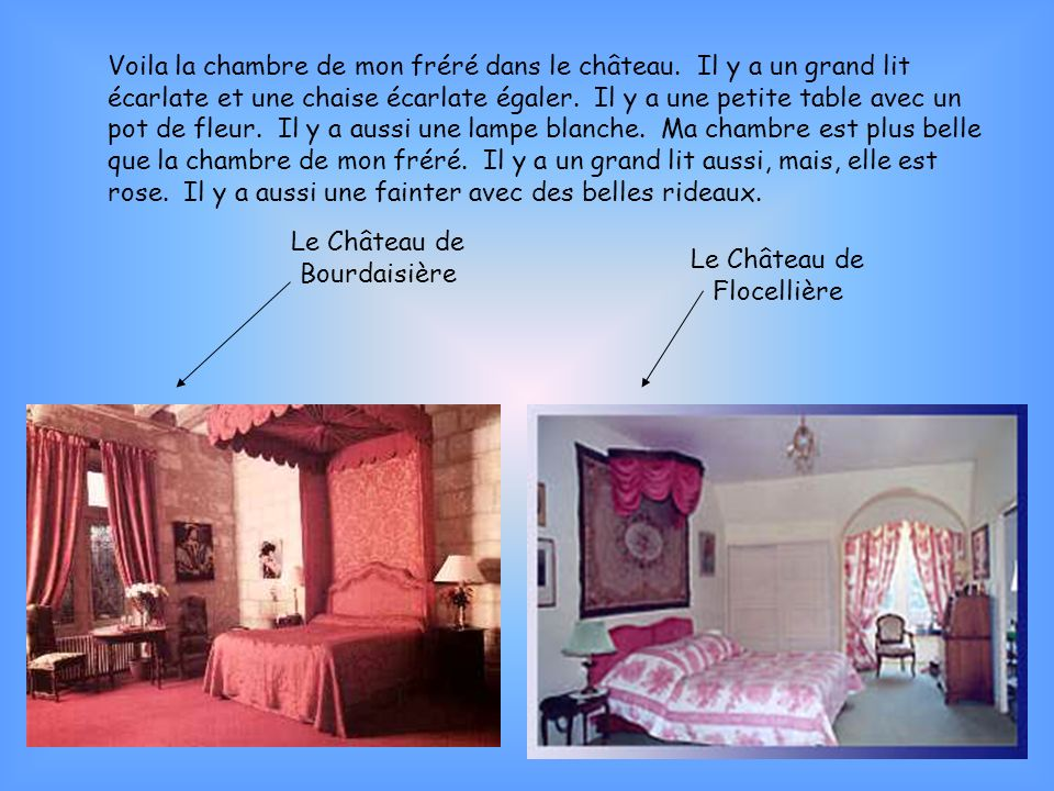 Le Château de Bourdaisière Le Château de Flocellière