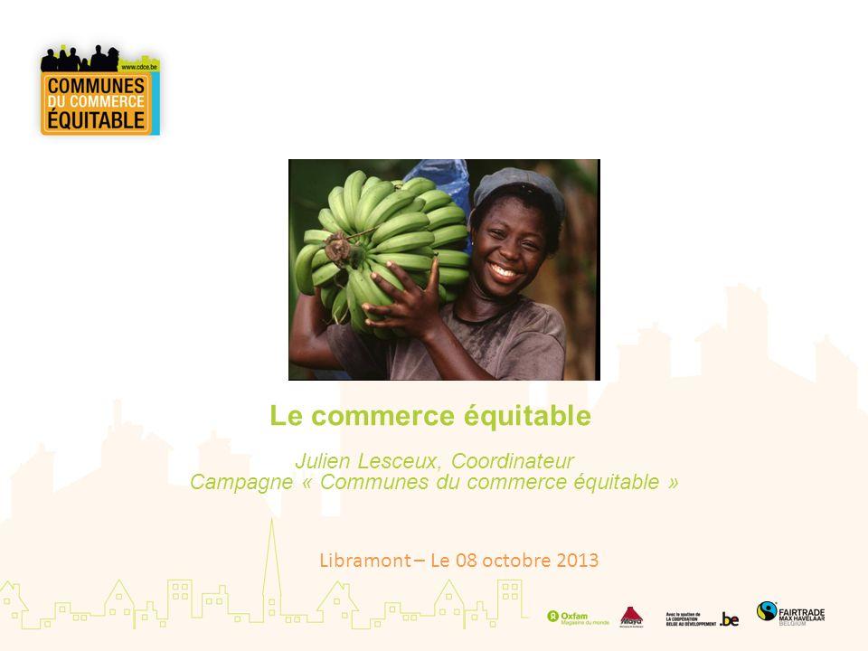 Le commerce équitable Julien Lesceux, Coordinateur