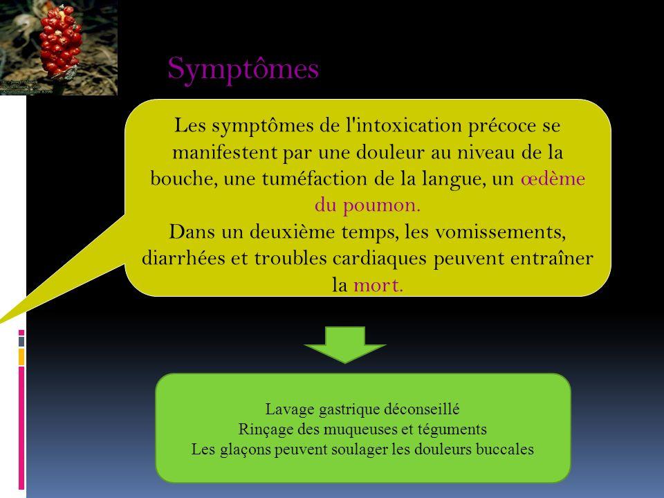 Symptômes