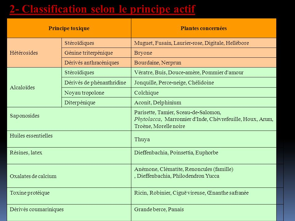 2- Classification selon le principe actif