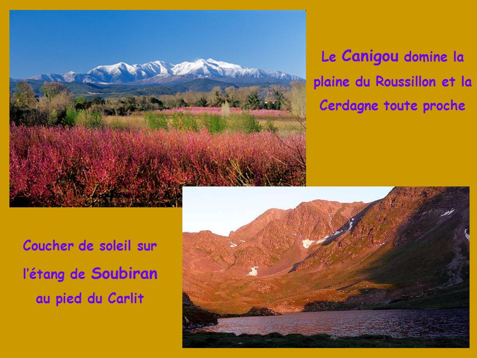 plaine du Roussillon et la