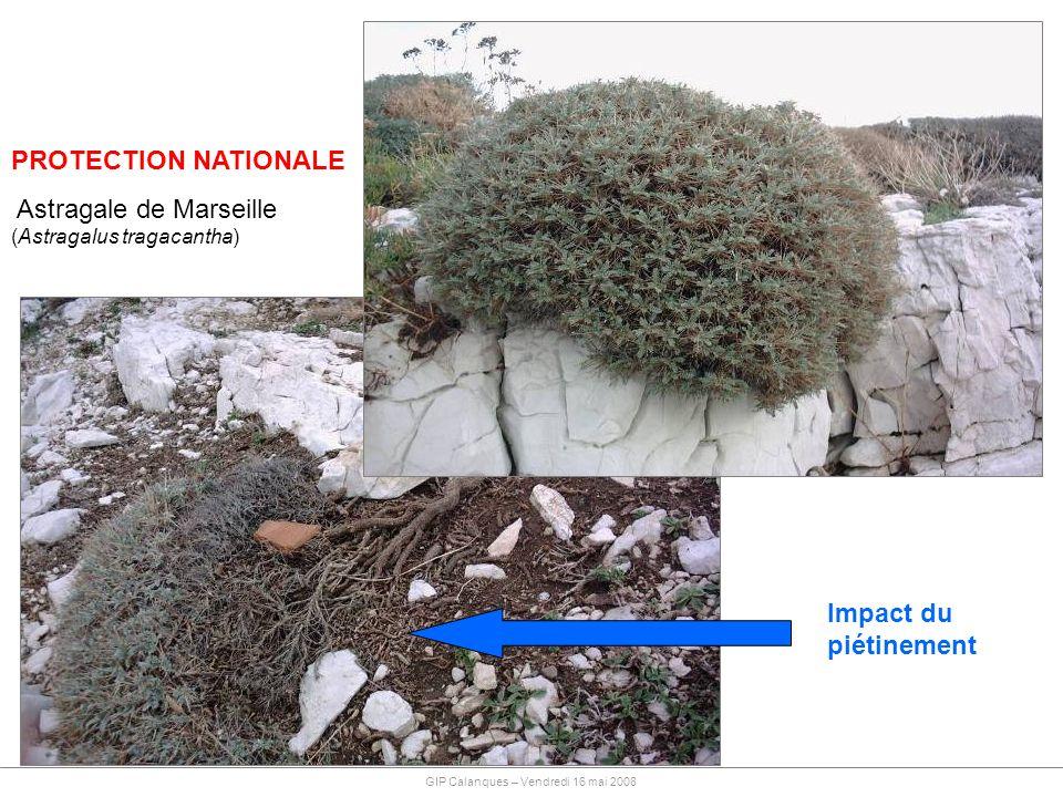 PROTECTION NATIONALE Impact du piétinement