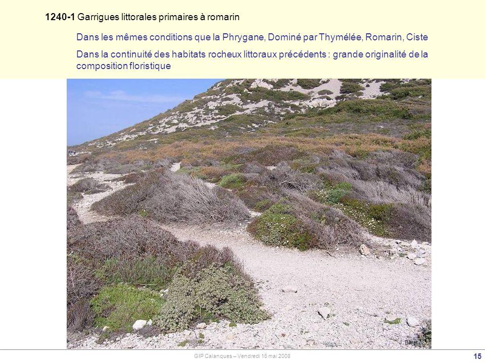 1240-1 Garrigues littorales primaires à romarin