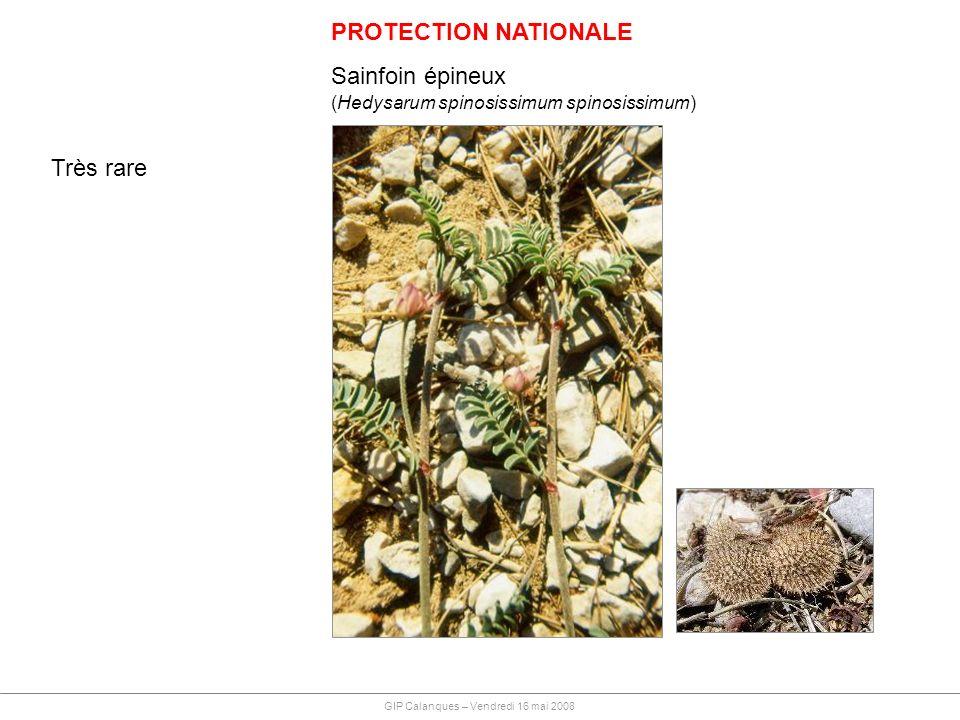PROTECTION NATIONALE Sainfoin épineux Très rare