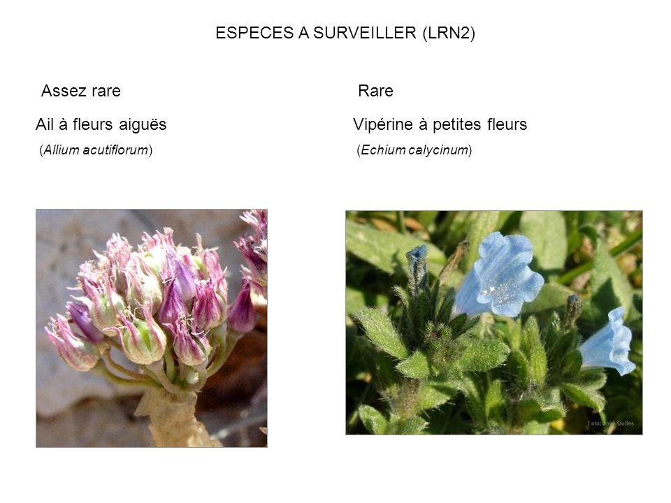 ESPECES A SURVEILLER (LRN2)