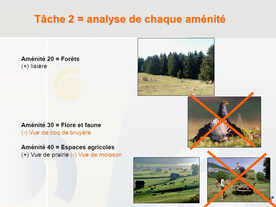 Tâche 2 = analyse de chaque aménité