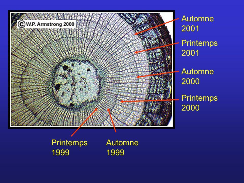 Automne 2001 Printemps 2001 Automne 2000 Printemps 2000 Automne 1999 Printemps 1999