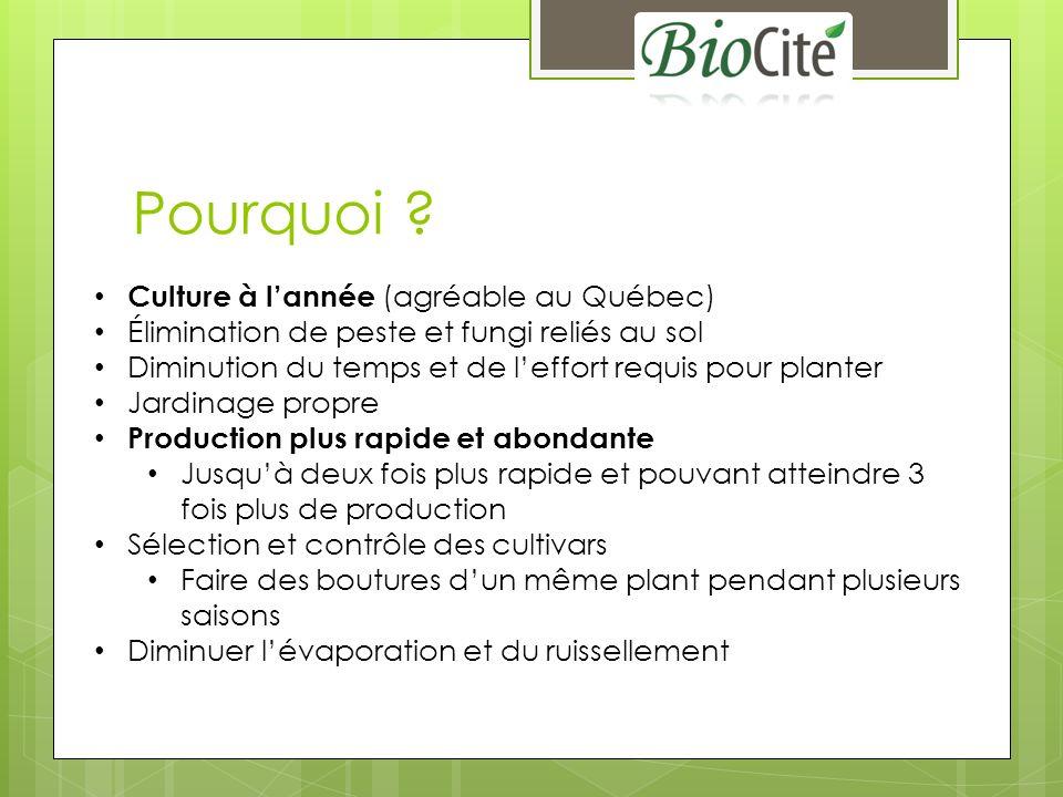 Pourquoi Culture à l'année (agréable au Québec)