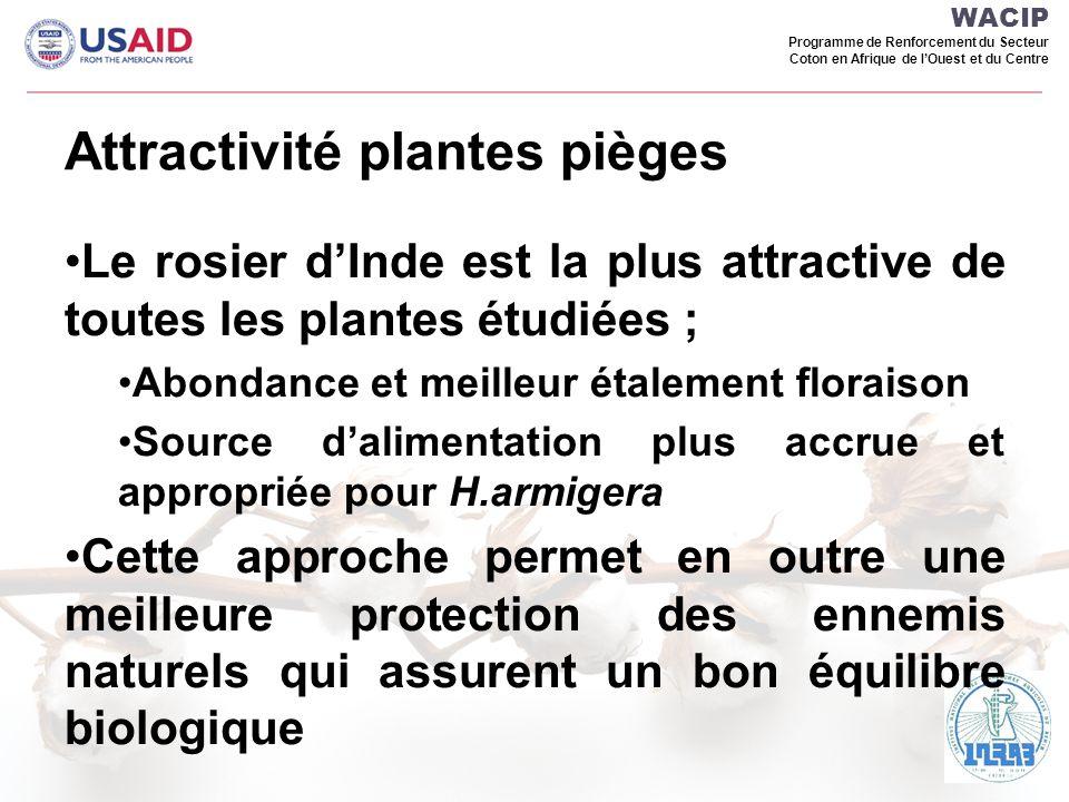 Attractivité plantes pièges
