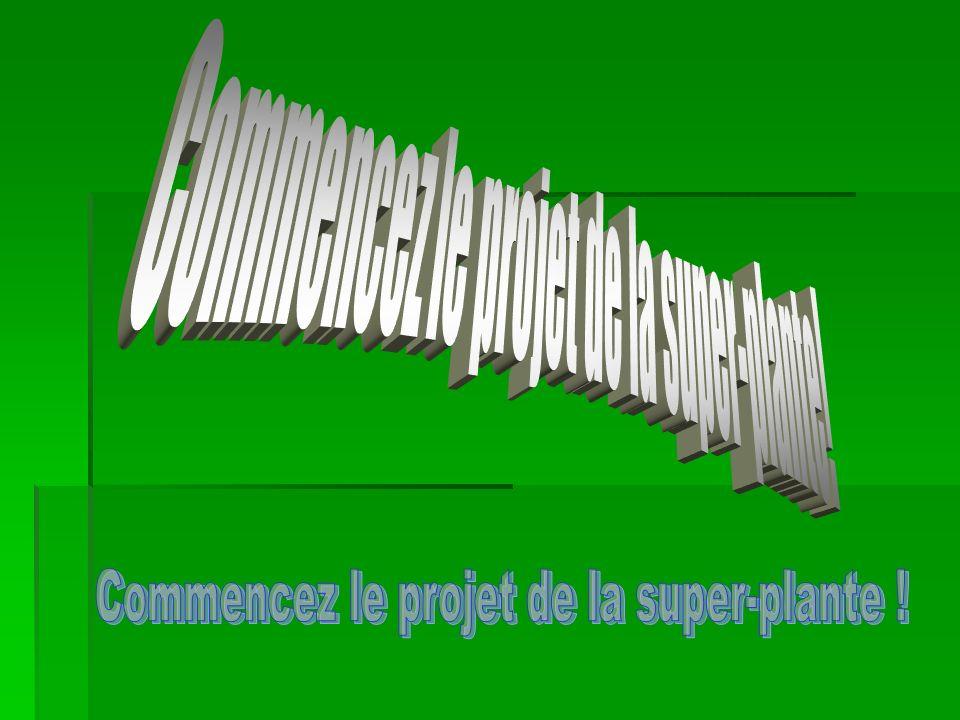 Commencez le projet de la super-plante!