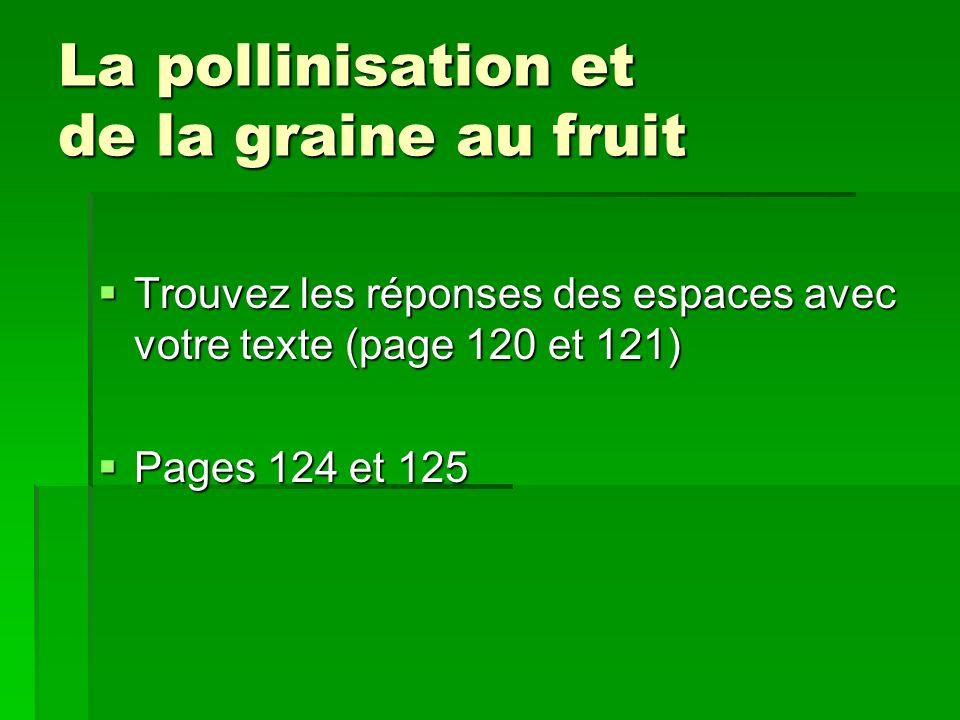 La pollinisation et de la graine au fruit