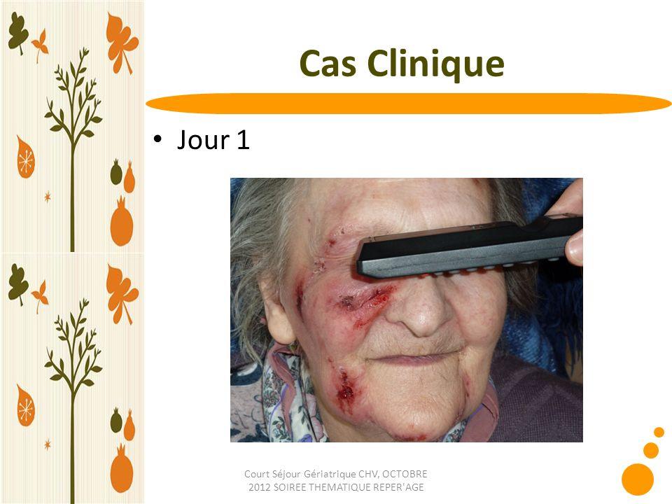 Court Séjour Gériatrique CHV, OCTOBRE 2012 SOIREE THEMATIQUE REPER AGE