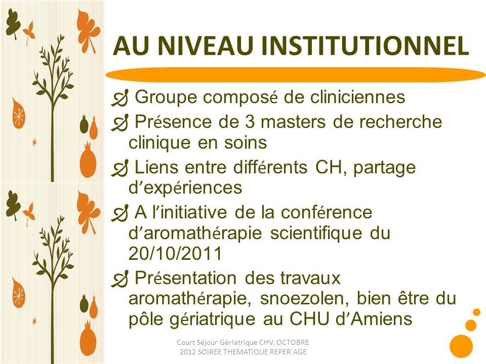 AU NIVEAU INSTITUTIONNEL
