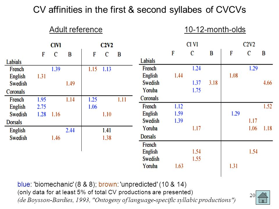 CV affinities in the first & second syllabes of CVCVs