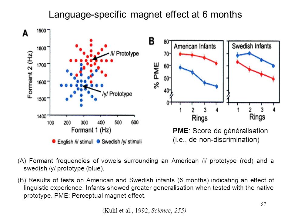 Language-specific magnet effect at 6 months