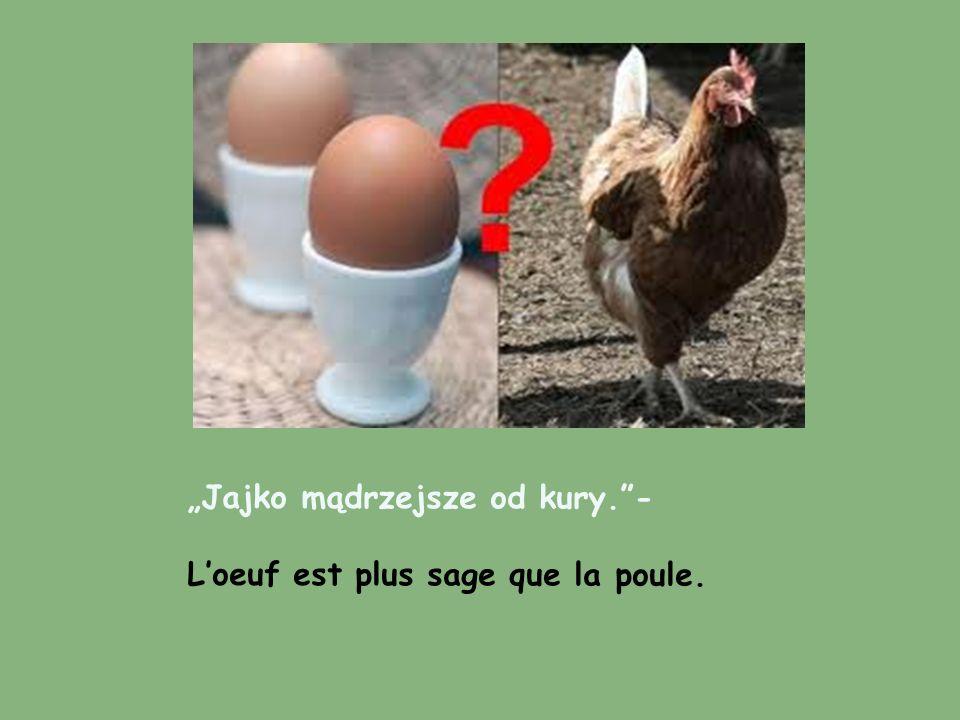 """""""Jajko mądrzejsze od kury. -"""