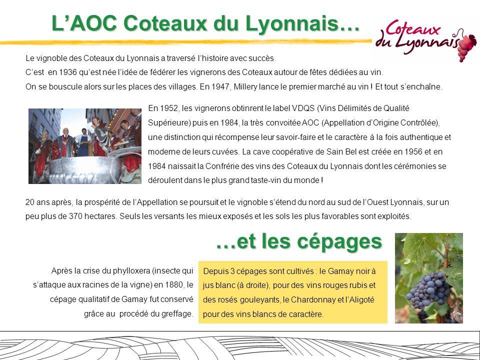 L'AOC Coteaux du Lyonnais…